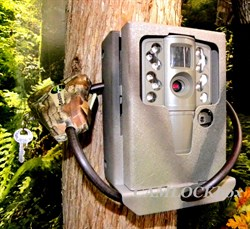 Moultrie A-20 A-20i Security Box