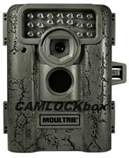 D333 Camera