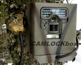 Moultrie D-444 Security Box