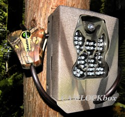 Moultrie Flash Extender Security Box
