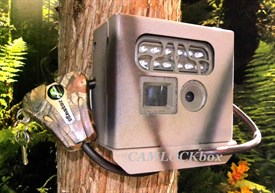 Moultrie Game Spy Secuity Box