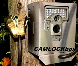 Moultrie M-550 Security Box