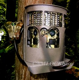 Moultrie P180i Security Box