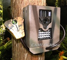 Bushnell 119432CW Security Box