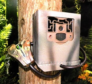Muddy Pro Cam Security Box