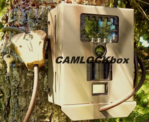 Stealth Cam shadow box