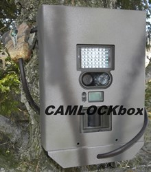 Stealth Cam Prowler Style Box