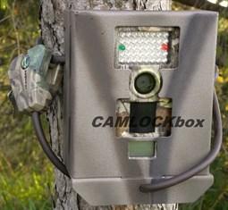 Stealth Cam Unit Tree