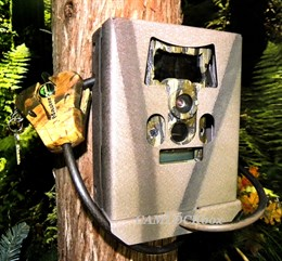 Wildgame Innovations Cloak Pro Security Box